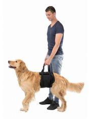 Транспортировочный бандаж для собак, черный