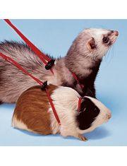 NY ROD регулируемая шлейка для морских свинок и хорьков