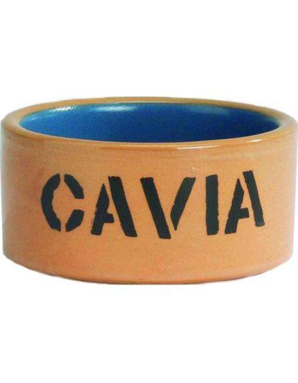 Миска керамическая для морской свинки бежево-голубая