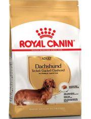 Dachshund Adult корм для собак породы такса в возрасте с 10 месяцев