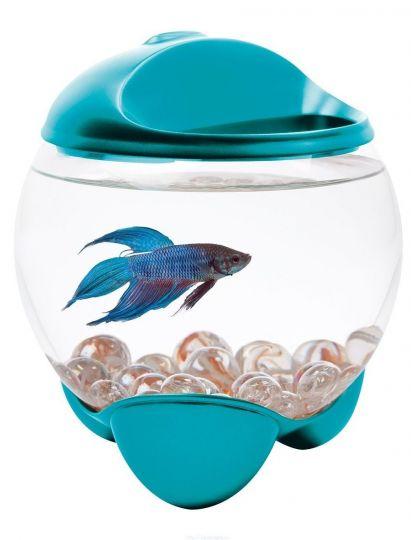 Тетра аквариум-шар с освещением Betta Bubble бетта баббл, бирюзовый
