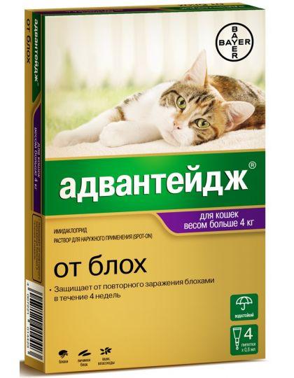 Капли на холку Адвантейдж®  от блох для кошек более 4 кг