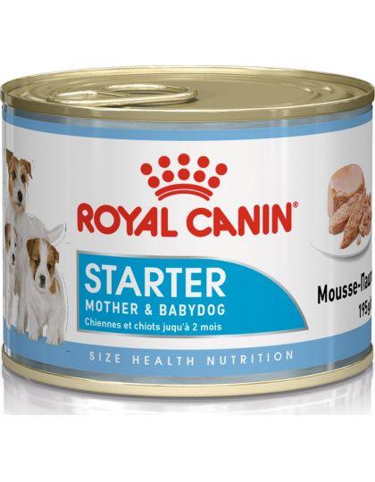 Starter Mousse для щенков и кормящих собак, паштет