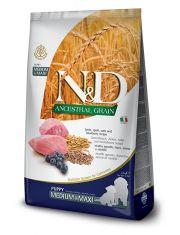 N&D ANCESTRAL GRAIN Lamb & Blueberry Puppy medium & maxi низкозерновой корм для щенков средних и крупных пород, ягненок, спельта, овес, черника