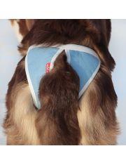 Трусы для собак многоразовые ABSORB