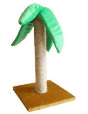Когтеточка пальма сизаль