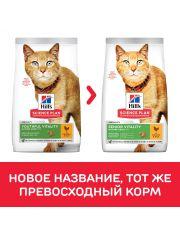 Science Plan Youthful Vitality для кошек старше 7 лет для повседневного питания курица с рисом