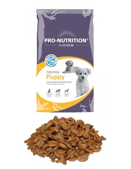 Prestige Puppy / престиж паппи