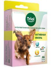 """Мультивитаминное лакомство для собак """"Активная жизнь"""""""