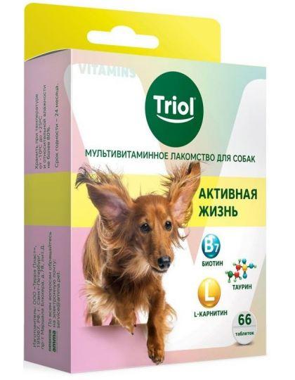 Мультивитаминное лакомство для собак Активная жизнь