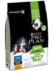 Starter для щенков крупных пород, а также для беременных и кормящих собак