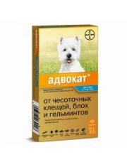 Адвокат 100 капли на холку для собак от 4 до 10 кг