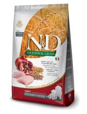 N&D ANCESTRAL GRAIN Chicken & Pomegrante Puppy Medium & Maxi низкозерновой корм для щенков средних и крупных пород курица, спельта, овёс, гранат
