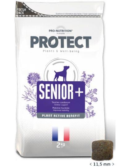 Protect Senior +  лечебно-профилактический корм для собак преклонного возраста, замедляющий процессы старения