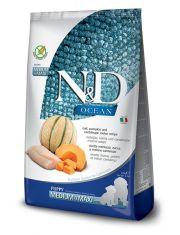 N&D OCEAN Puppy Pumpkin, Codfish & Melon Medium/Maxi беззерновой для щенков, беременных и кормящих собак средних и крупных пород треска, тыква и дыня