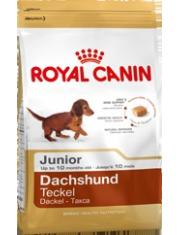 Dachshund Junior полнорационный корм для щенков породы такса в возрасте до 10 месяцевздоровье костей и суставов