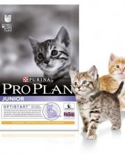 Junior сухой корм для котят курица/рис