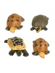 Грот лягушки и черепахи