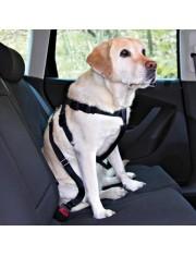 Автомобильный ремень безопасности со шлейкой для собак