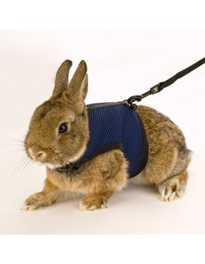 Шлейка для кроликов и кошек с поводком мягкая