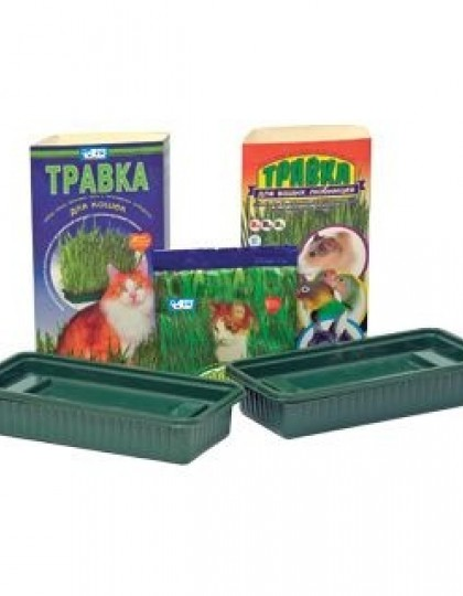 Травка для кошек пластиковый лоток