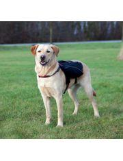 Шлейка - рюкзак для собаки